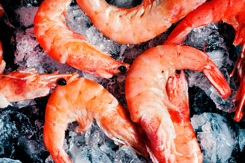 Berezan Shrimp Offered by Albion Farms and Fisheries