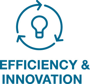 Efficiency and Innovation